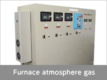 Furnace atmosphere gas analyzer panel